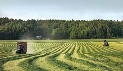 کاربرد ازت مایع در کشاورزی